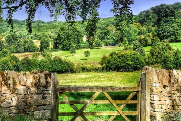 en torr stenmur i de engelska Cotwolds. Saintbury, Worcestershire.