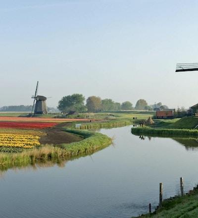 Holland 05