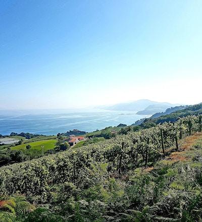 Baskien vandring 9