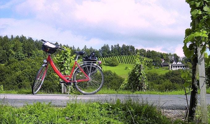 Mosel cykel 5