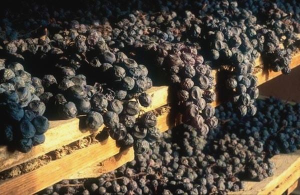 Vin vandring valpolicella amarone 2
