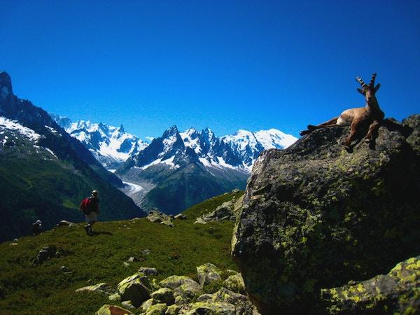 Tour du mont blanc vandring 1