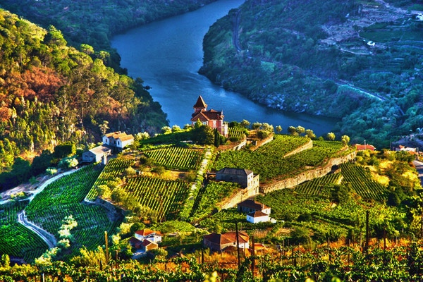 Landskap i Douro Valley, Portugal