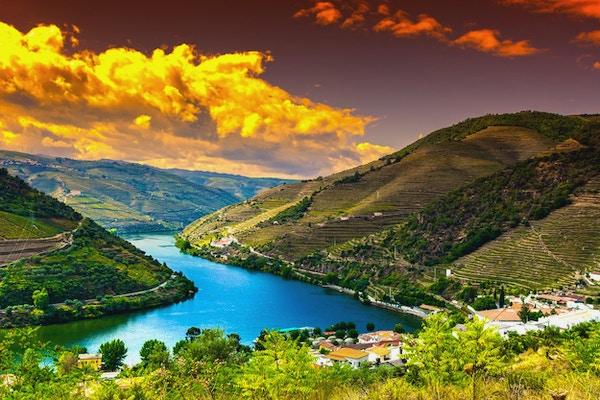 Res till floden Douro-regionen i Portugal bland vingårdar och olivlundar. Vinodling i de portugisiska byarna vid soluppgång