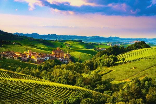 Langhe vingårdspanorama, Barolo by, Unesco-plats, Piemonte, norra Italien Europa.