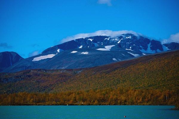 Högt berg med skog i förgrunden. Foto
