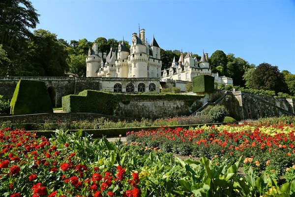 Blommor i förgrunden av ett slott i Loire