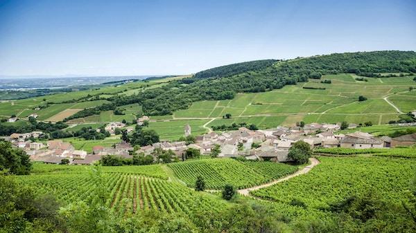 Den gamla staden Solutre-Pouilly med vingårdar i Bourgogne, Frankrike