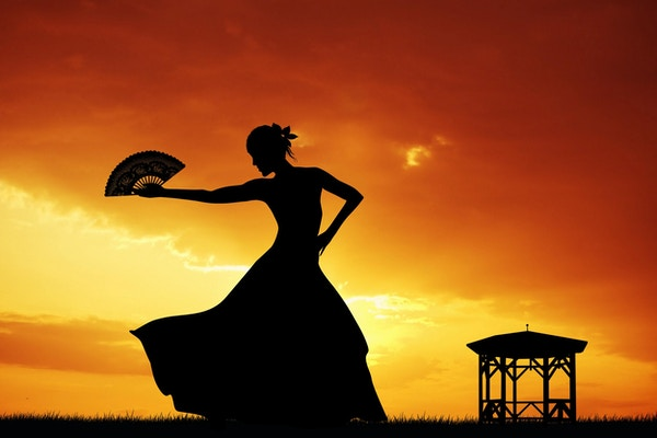 illustration of flamenco silhouette at sunset