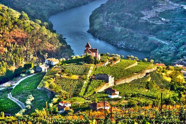 Landskap i Douro Valley, Portugal