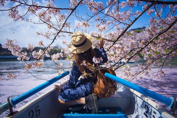 Den asiatiska kvinnan tycker om att resa i Japan under vårsäsongen.