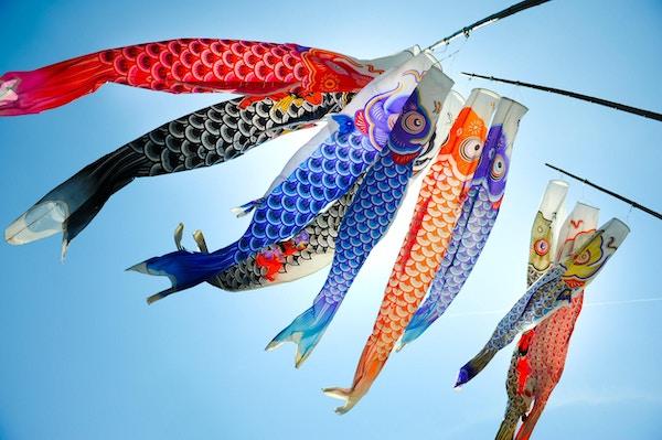 Traditional koi shaped japanese kite called koinobori against blue sky in Hiroshima.