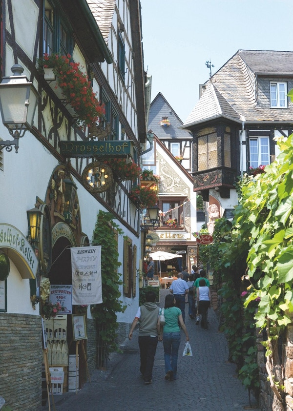 Rüdesheim, Rhen