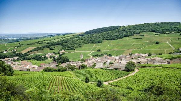Gammal by Solutre-Pouilly med vingårdar, Bourgogne, Frankrike