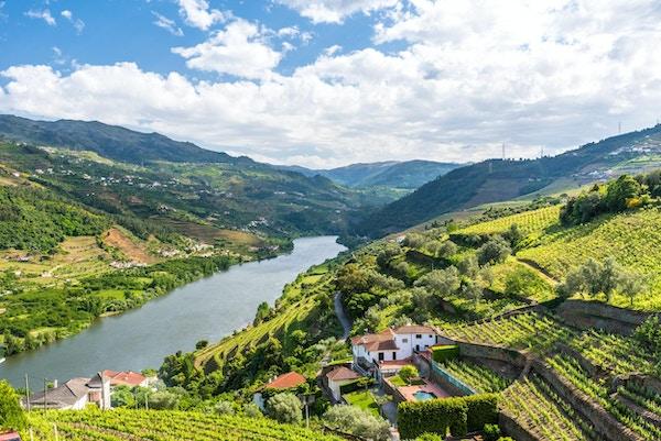 Floden rinner genom idylliskt landskap i Regua