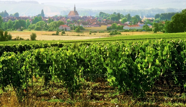 chablis village and vineyards burgundy france
