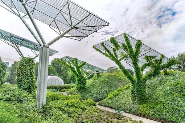 Trädgården på universitetets takterrass