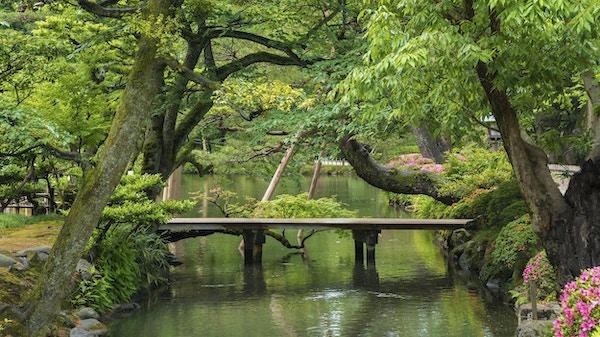 Japansk trädgård i Kanazawa, Japan