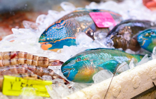 Färgrik färsk fisk på ett marknadsstånd.