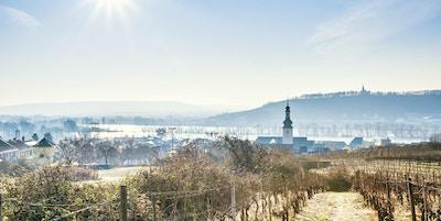 Rüdesheim och Rhen på en kall vintermorgon