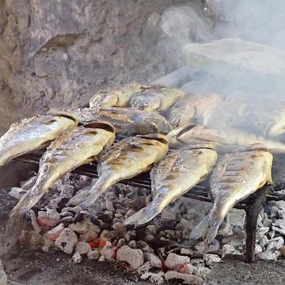 Kroatien grillad fisk