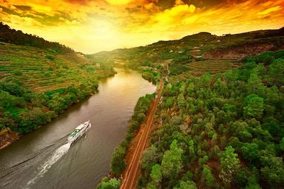 Vingårdar i dalen av floden Douro, Portugal