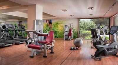 Gymmet med maskiner, stora fönster ut mot trädgården, The Westin La Quinta Golf Resort & Spa, Marbella, Spanien