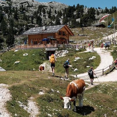 Cortina dolomiterna vandring 15