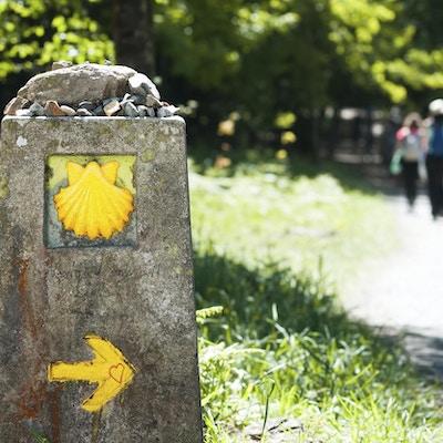 Vägen av St James skal och pilmärken för pilgrimer till Compostela domkyrka, Galicien, Spanien