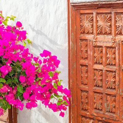 Gammal trädörr med ljusa vibrerande blommor på gatan av Garachico, Tenerife, Spanien. Inristade forntida dörr med en vit vägg på en solig dag