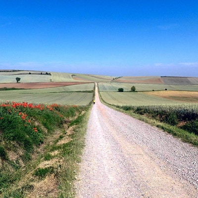 Taget under Camino de Santiago. Någonstans mellan Logroà ± o och Burgos