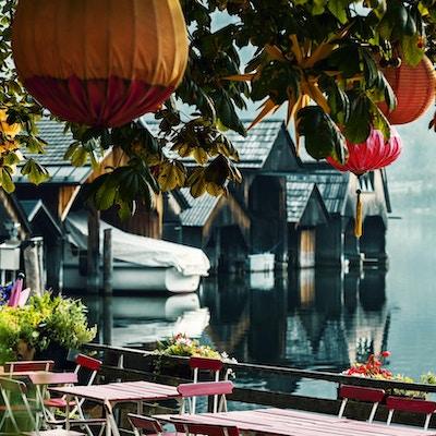 Kinesiska lyktor på ett kastanjeträd mot bakgrunden av en alpin sjö och båtskjular på den tidiga sommarmorgonen