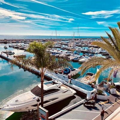 Lyxiga båtar, palmer, blå himmerl, Puerto Banus hamn, Marbella, Spanien