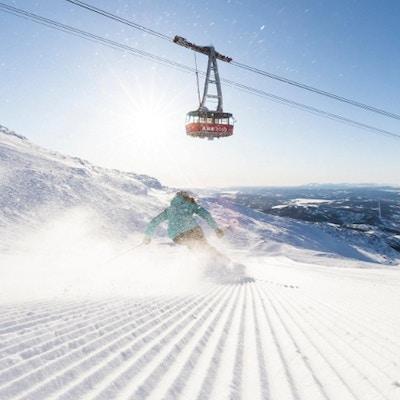 Are skidakning