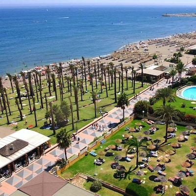 Strand med badare, palmer och strandpromenad